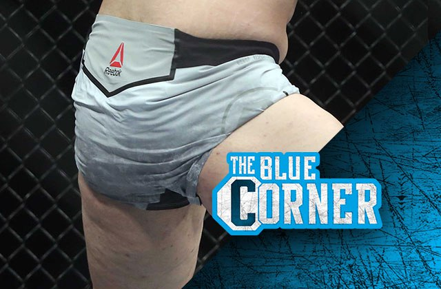 albini-diaper-ufc-fight-night-120-tbc